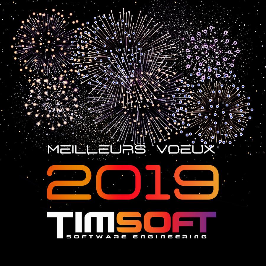 TimSoft - SSII développement Logiciel, Paris, France.